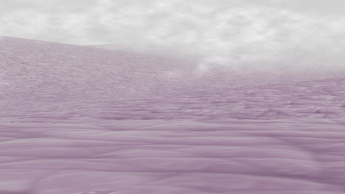 LEVASSEUR_landscape_skin_for-octopus-implants