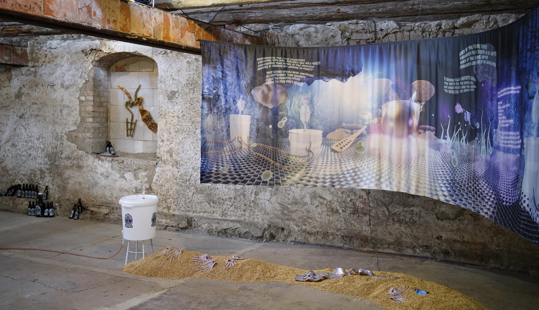 brewing symbiotic care (installation view at Kunstraum Schwemme, 2021)